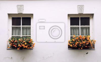 Fototapete: Alte fenster und blumenkasten mit orangenblüten
