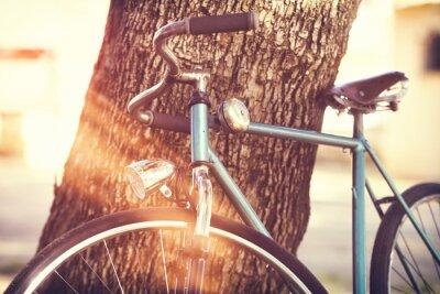 Fototapete Altes Fahrrad lehnt an einem Baum