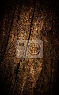 Altes Holz Textur geknackt