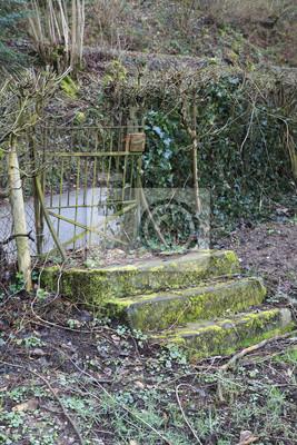 Fototapete Altes Rotes Gartentor, Tür, Mit Einer Steintreppe Im Garten