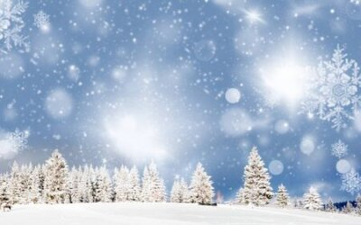 Fototapete amazing Christmas background with snowy firs winter landscape