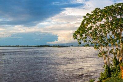 Fototapete Amazon River Aussicht