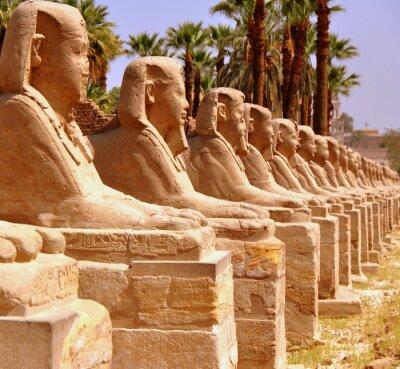 Fototapete Amun Tempel von Luxor