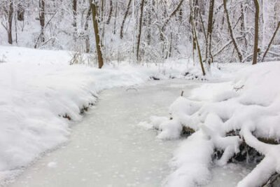 Fototapete An ice covered little stream in the winter forest covered with snow. Repinka river in Obninsk, Russia