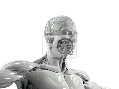 Anatomie des menschen gering drei viertel blick auf gesicht und ...