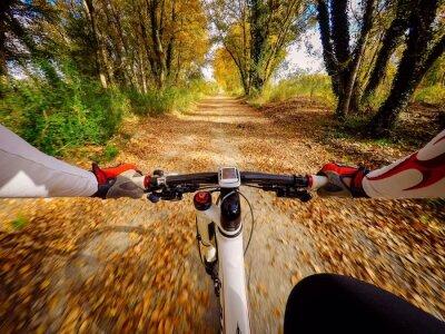 Fototapete Andando in bicicletta in autunno in campagna. Pov originalbild der ansicht