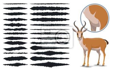 Fototapete Animal fur texture brush strokes, design elements