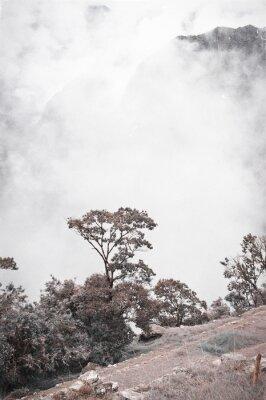 Fototapete Ansicht von Machu Picchu