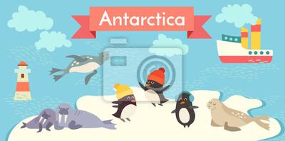 Antarktik Cartoon Tiere Vektor-Illustration gesetzt. Pinguin, Walross, Robbe, Leuchtturm, Boot.
