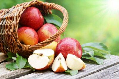 Fototapete Äpfel im Körbchen mit Sonne