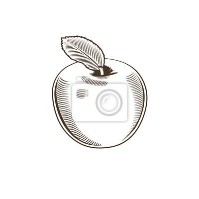 Apple im Weinleseart. Linie Kunst Vektor-Illustration