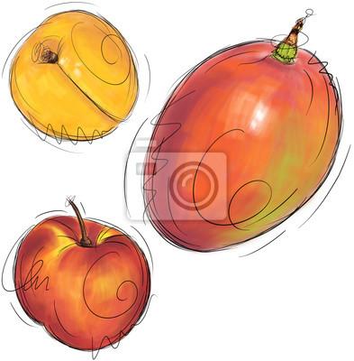 Aprikose, Mango, Nektarine und