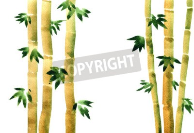 Aquarell Bambus Hain Frische Bambus Stiele Grune Bambus Wald