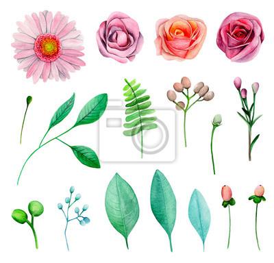 Aquarell Gartenblumen Rosa Rosen Blumen Clipart Fototapete