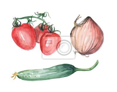 aquarell gem se gurken tomaten zwiebeln wasserfarbe gem se fototapete fototapeten. Black Bedroom Furniture Sets. Home Design Ideas