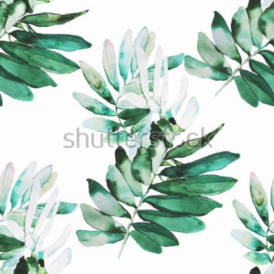 Fototapete Aquarell Pflanzen Abbildung Muster