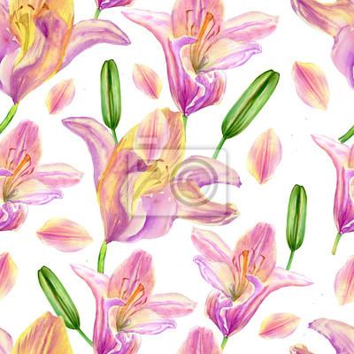 Aquarell rosa lilie, garten blume isoliert auf weiß, nahtlose ...