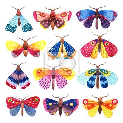 Aquarell-Set von bunten Schmetterlingen