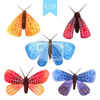 Aquarell-Set von kleinen Schmetterlingen und Motten