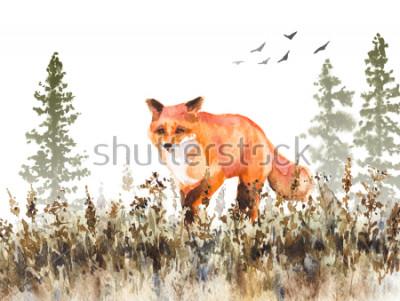 Fototapete Aquarellmalerei. Handgezeichnete animalische Abbildung. Roter Fuchs, der auf verblassende Wiese geht. Herbstszene mit wilder Raubtierbewegung, Tannenbäumen im Nebel und getrocknetem Gras.