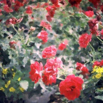 Aquarellmalerei rote Rose / Fotoeffekt Aquarell