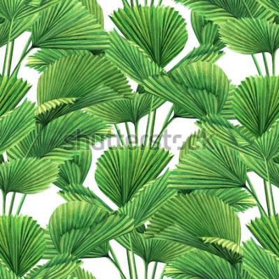 Fototapete Aquarellmalereikokosnuss, Palmblatt, Grün verlässt nahtlosen Musterhintergrund Tropische exotische Blattdrucke der gezeichneten Illustration des Aquarells Hand für Tapete, Textildschungel-Artmuster Ha