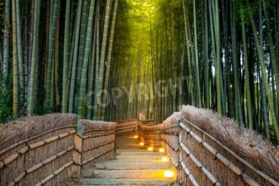 Fototapete Arashiyama Bambus-Wald in Kyoto Japan