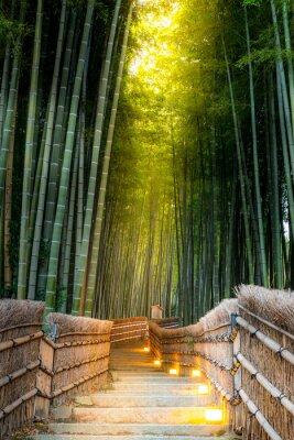 Fototapete Arashiyama Bambuswald