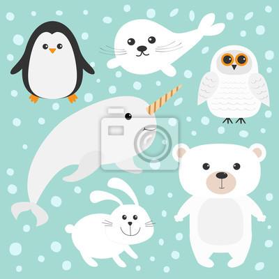Arktische polare Tier-Set. Weißer Bär, Eule, Pinguin, Seehundbabyharfe, Hase, Kaninchen, narwhal, Einhornfische. Kinderausbildungskarten. Blauer Hintergrund mit Schneeflocken. Isoliert. Flaches Design