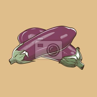 Auberginen im Vintage-Stil. Farbigen Vektor-Illustration