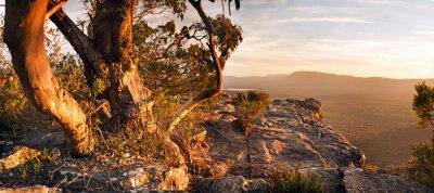 Fototapete Australian Bush Landscape