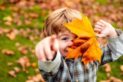 Fototapete Autumnal mood. Little child boy in autumn orange leaves, outdoor.
