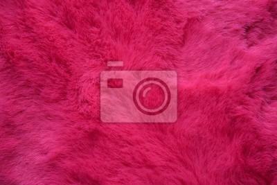 Fototapete background of pink fur