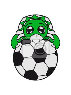 Ball Fussball Sport Sport Verein Kicker Tor Baby Art