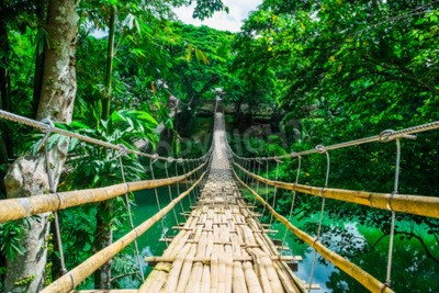 Fototapete Bamboo Fußgängerbrücke über den Fluss in tropischen Wald, Bohol, Philippinen