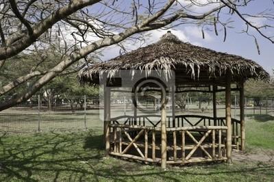 Bambus Pavillon Fototapete Fototapeten Pavillon Bambus Baum