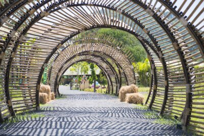 Fototapete Bambus-Tunnel-Struktur im Garten