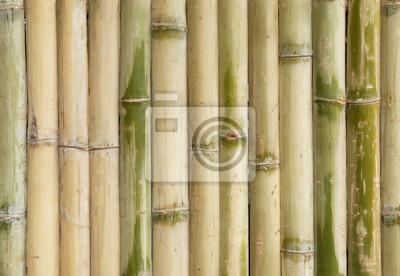 Bambus Zaun Wand Textur Hintergrund Fototapete Fototapeten Gerade