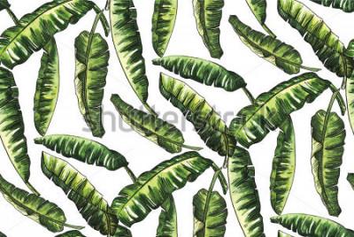 Fototapete Bananengrün verlässt Aquarell mit Linie Gekritzelmuster gleiche weniger Tapete Mode Vintage Hawaii auf weißem Hintergrund