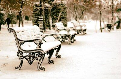 Fototapete Bank im schneebedeckten Winterpark