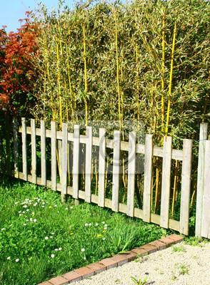 Barrière en bois devant haie de bambous, clôture de jardin ...