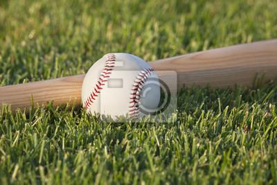 Baseball und Bat auf Wiese in der Morgensonne