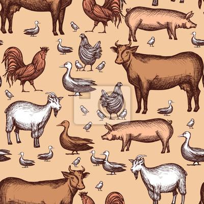 Bauernhof Nahtlose Muster
