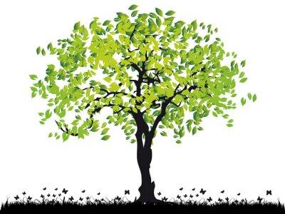 Baum-Silhouette alt, Gras, Sommer