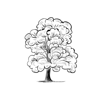 Fototapete Baum Skizze Hand Zeichnung Silhouette Vektor Illustration