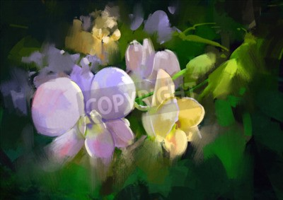 Fototapete beautiful painting of orchid flowers