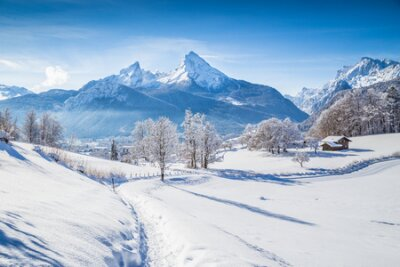 Fototapete Beautiful winter scenery with trees and mountain tops in the Alps on a sunny day with blue sky and clouds
