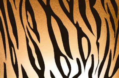 Fototapete Bengal-Tiger-Streifen-Muster