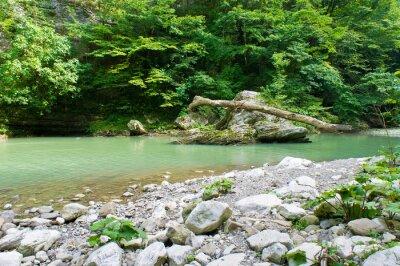 Fototapete Berg-Fluss im Kaukasus in der Nähe von Sotschi