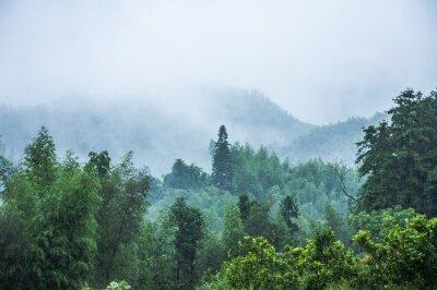 Fototapete Berge Landschaft im Regen und Nebel